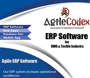 Enterprise Resource Planning ( ERP )